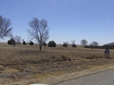 22 Pheasant Run,Dalhart,Hartley,Texas,United States 79022,Undeveloped Property,Pheasant Run,1126