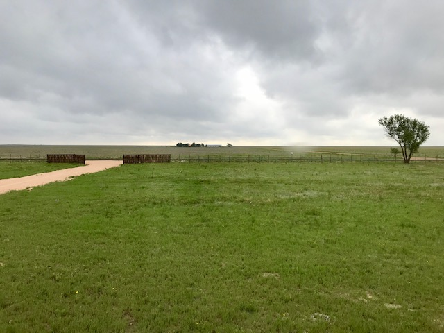 11545 FM 998,Dalhart,Hartley,Texas,United States 79022,3 Bedrooms Bedrooms,1 BathroomBathrooms,Single Family Home,FM 998,1181
