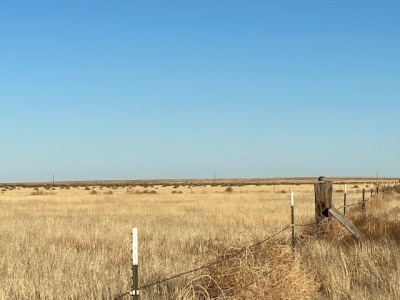FM 296, Texline, Dallam, Texas, United States 79087, ,Undeveloped Property,Farm and Ranch Properties,FM 296,1249