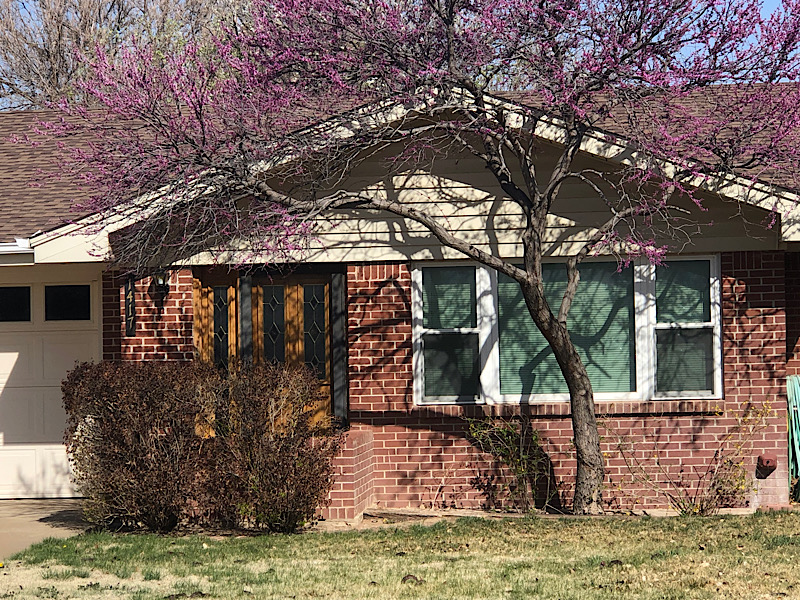 1417 Elm Ave, Dalhart, Hartley, Texas, United States 79022, 3 Bedrooms Bedrooms, ,1.75 BathroomsBathrooms,Single Family Home,Sold Properties,Elm Ave,1258