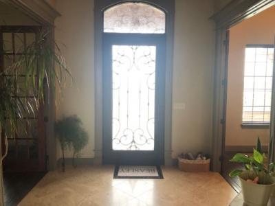 Steel/Glass  Entry Door