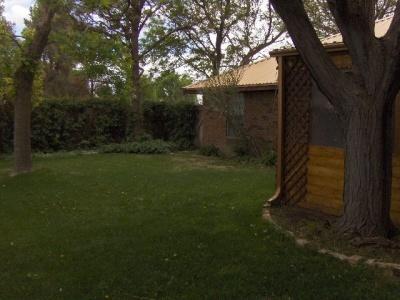 Backyard East Backyard